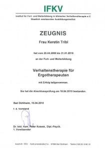 tribl-coaching-zertifikat-verhaltenstherapie